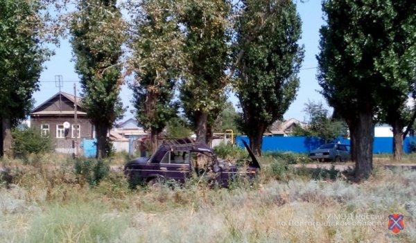 В Николаевске 55-летний водитель скончался, протаранив дерево