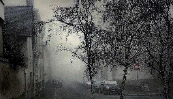 ВВолгограде ночью туман, аднем