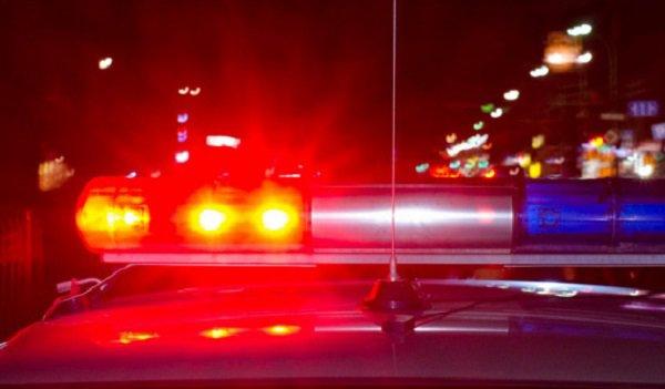 ВПалласовском районе шофёр «Тойоты» сбил насмерть 60-летнего мужчину