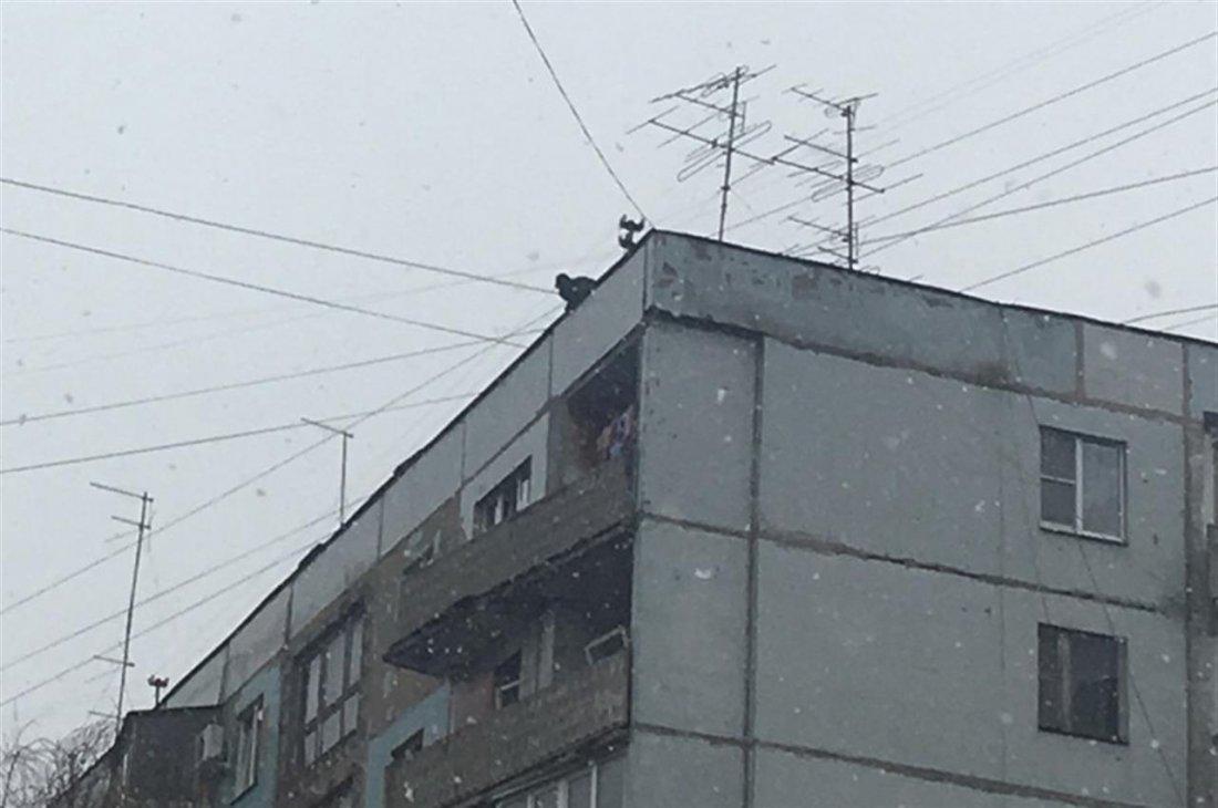 ВСамаре наЧернореченской мужчина бегал покраю крыши дома