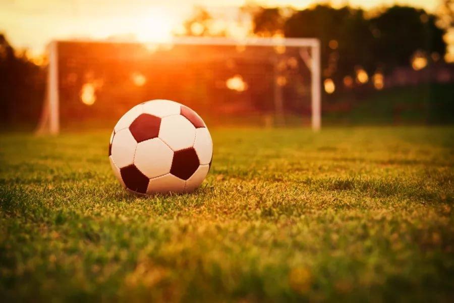 Впреддверии Кубка Конфедераций FIFA 2017 вволгоградском регионе пройдут «Дни футбола»