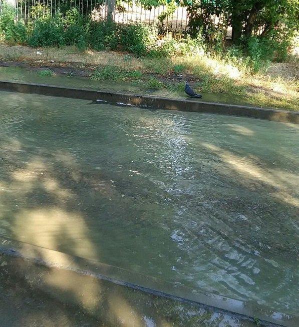 Из-за порыва трубы в Волгограде две улицы затопило водой